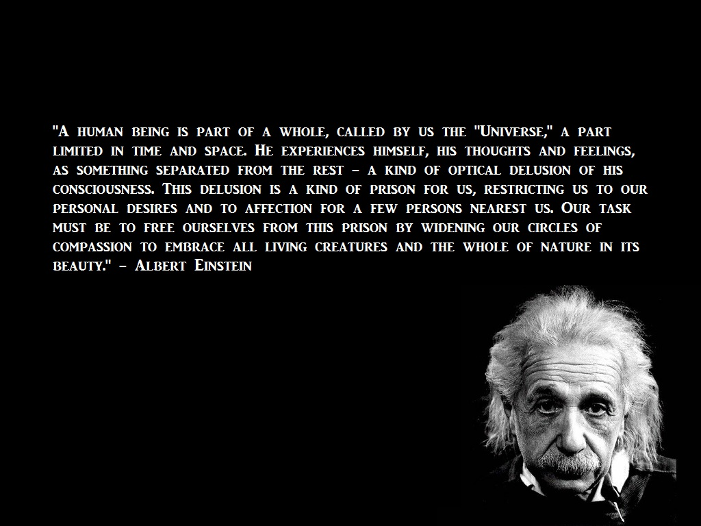 30 Famous Albert Einstein Quotes