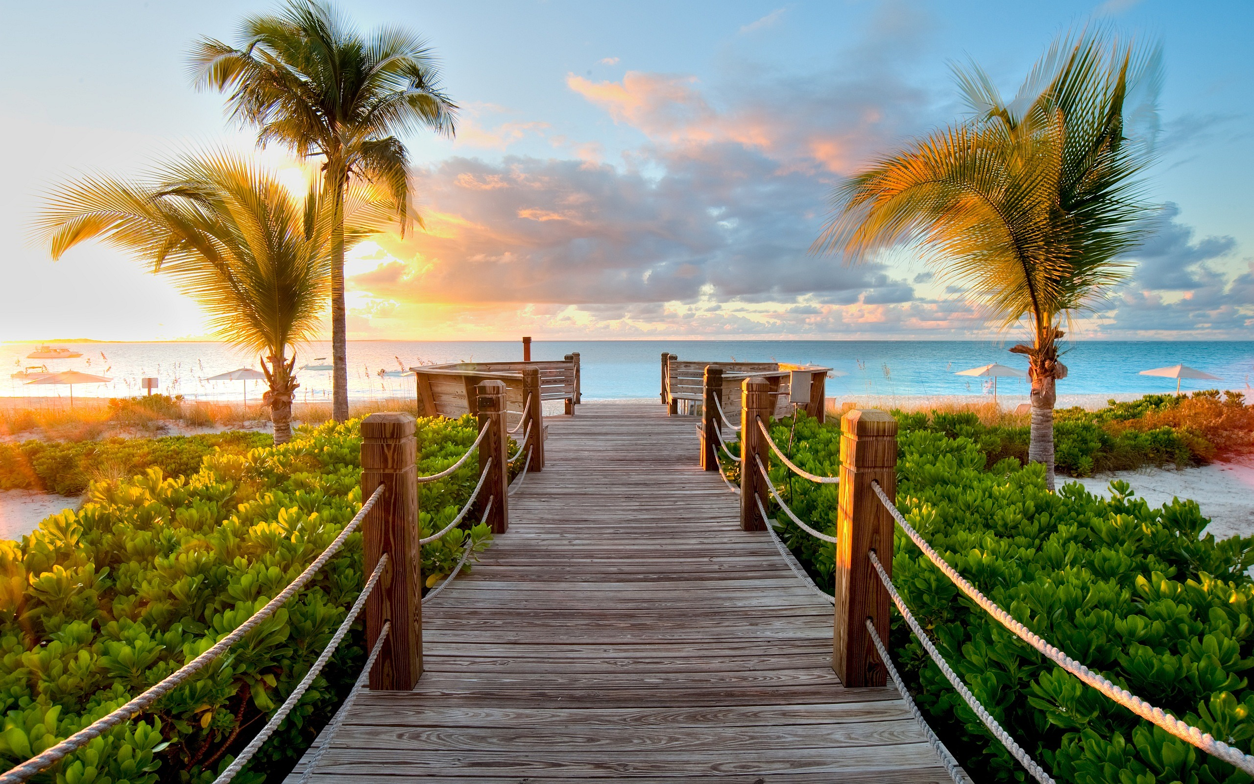 Awesome Caribbean Wood Beach picture