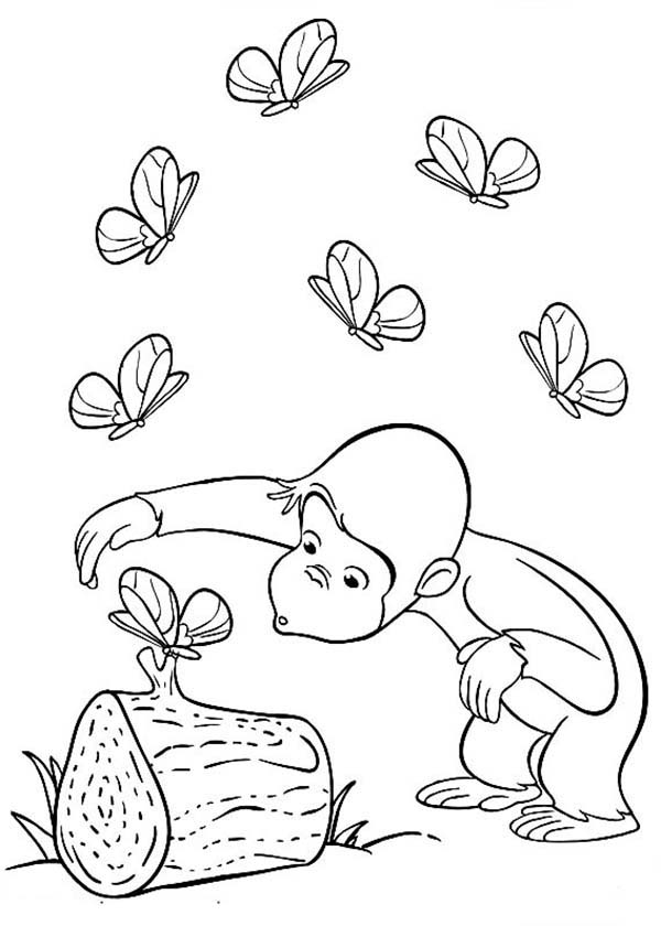 Caring johny for Butterfly best Coloring Page for kids