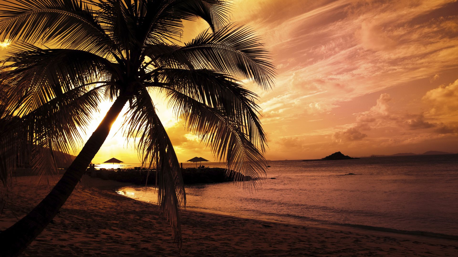 Tropical beach scenery at night Wallpapers