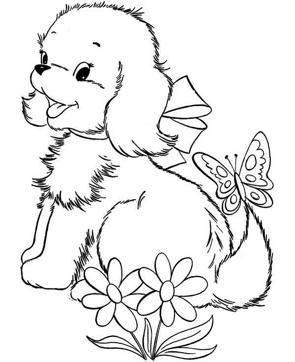 free printable puppy with a butterfly coloring page
