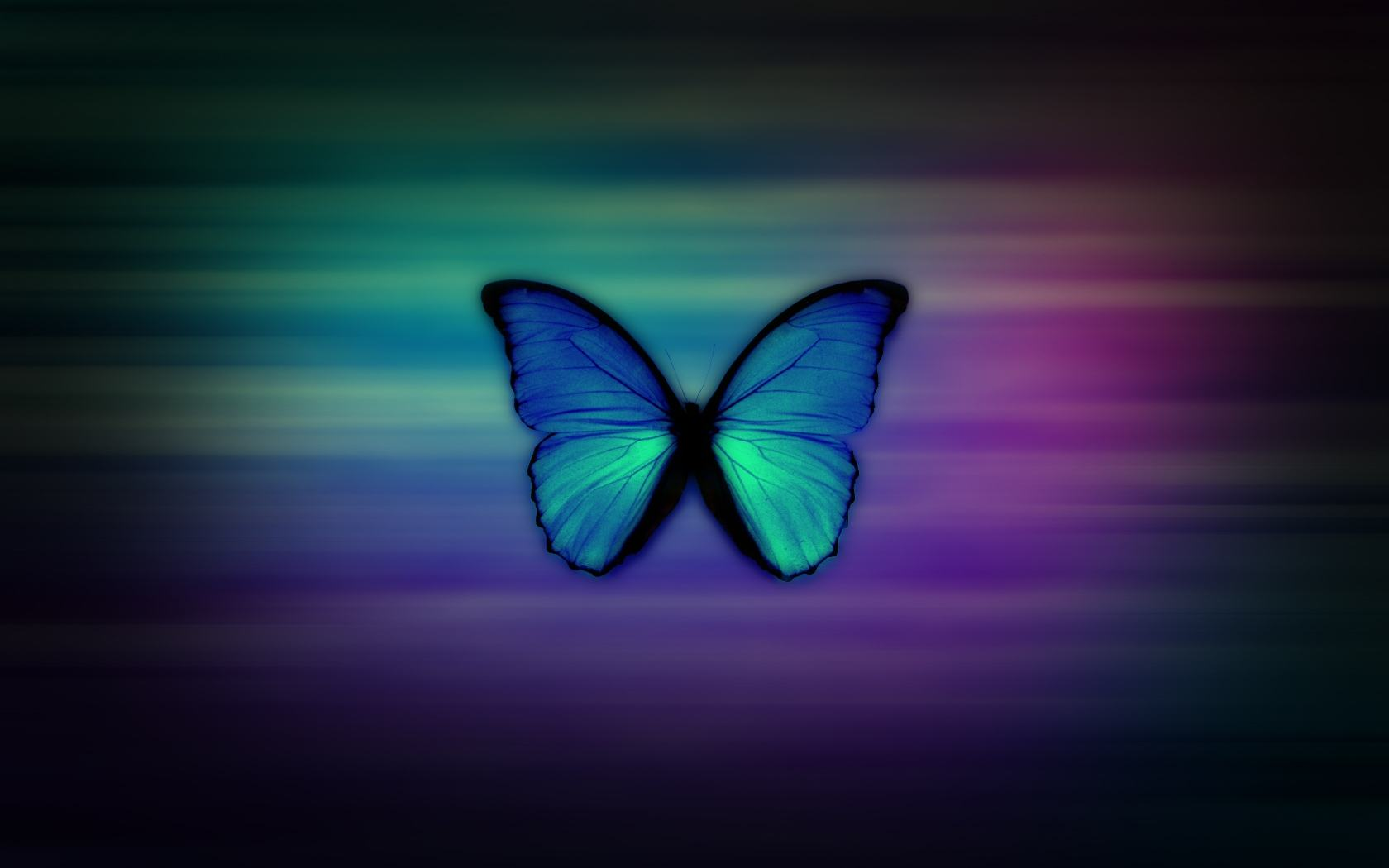 girly-wallpapers-cool-butterfly-neon-effect