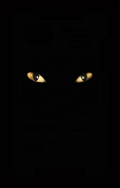 cat-eyes-scary-halloween-iphone-wallpapers