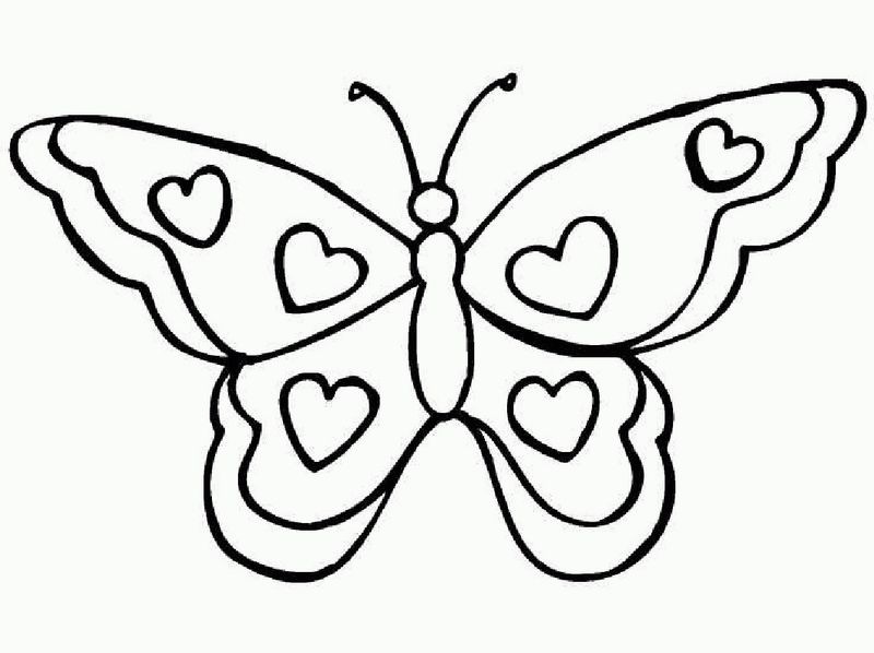 Butterfly Coloring Pages Free Download