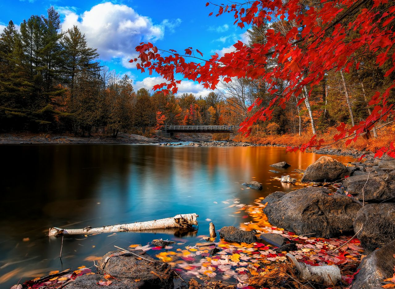lake for Tablet Wallpapers