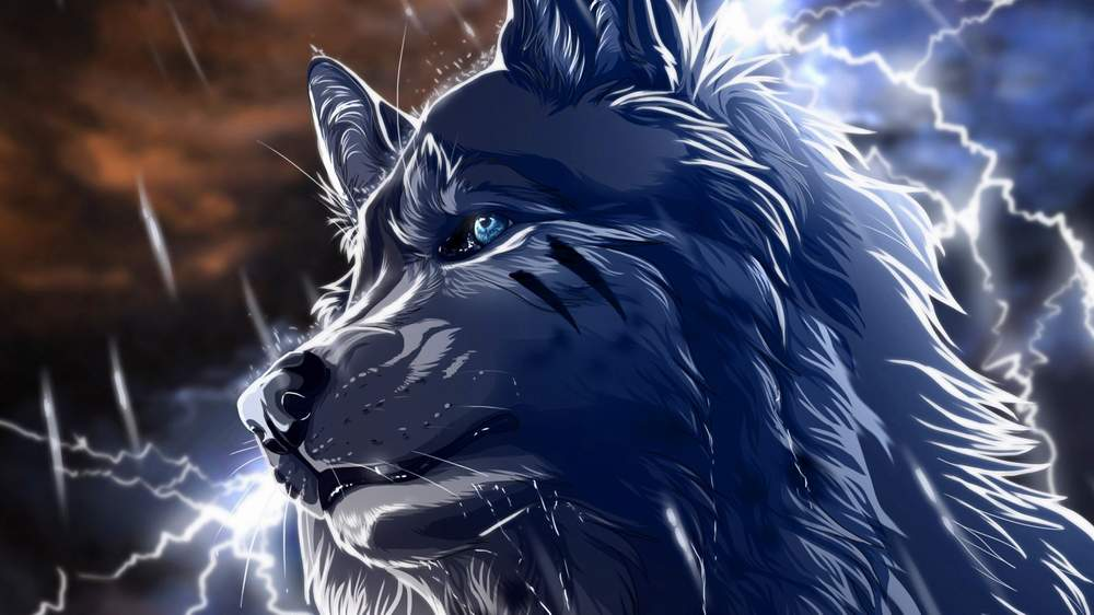 30 Cool Wolf Wallpapers To Stand