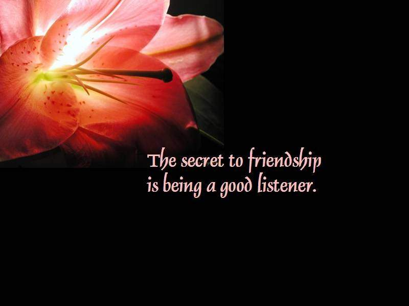 30 Quotes About Friendship
